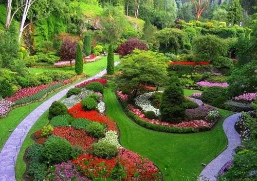 باغ نامنظم