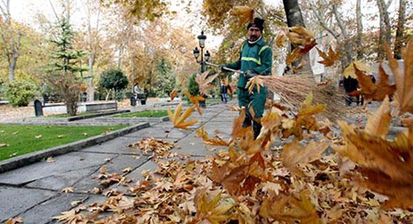 جمع آوری برگ های پاییزه