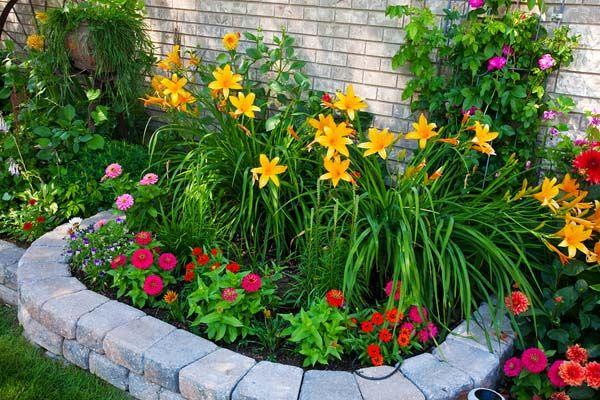 محوطه سازی با گیاهان