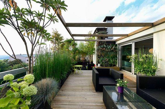 باغ بام یا روف گاردن