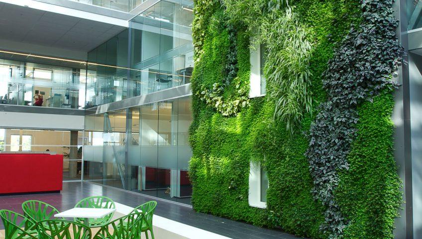 دیوار سبز و گرین وال